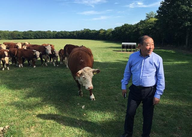 Image of: Adoption Rspca Farm Animal Welfare Advocacy In China Farming Uk Rspca Farm Animal Welfare Advocacy In China Open Philanthropy